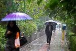 آغاز بارشها و کاهش دما در شمال کشور