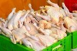 چرایی نوسان قیمت مرغ در بازار