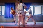 برگزاری تمرین مشترک تیمهای ملی تکواندو مردان