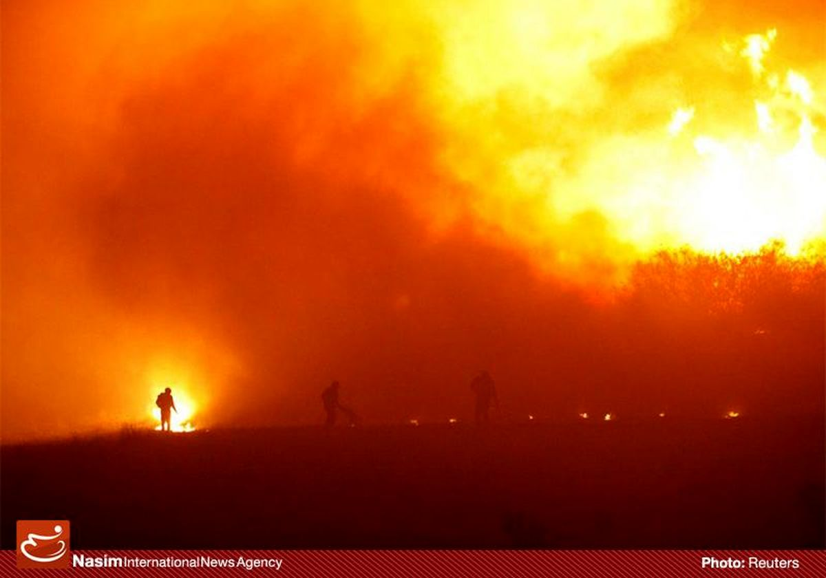 آتش سوزی در حوالی باغ پرندگان تهران مهار شد/حادثه بدون مصدوم