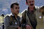 همه واقعیتها درباره رامین حسین پناهی؛ تروریستی در نقاب فعال مدنی