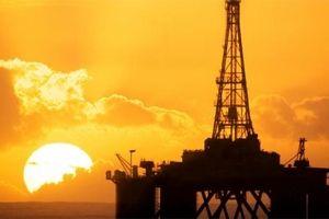 جزئیات بازداشت یک مدیر نفتی