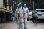 چین خواستار تسریع ارسال کالاهای پزشکی از اتحادیه اروپا شد