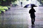 بارش باران در تمام کشور به جز دو استان
