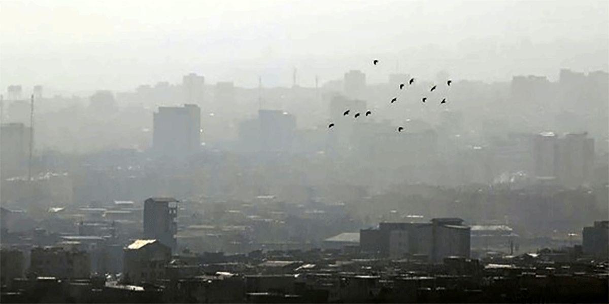 اینفوگرافی: بلایی که هوای آلوده سر ما میآورد