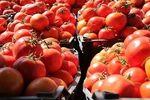 داستان تکراری گوجه فرنگی