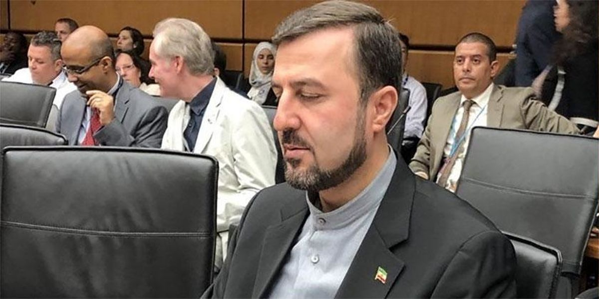 غریبآبادی: یکپنجم بازرسیهای آژانس از ایران است