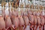 مرغ قیمت ۴۰هزار تومان را هم دید