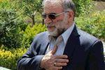 عکس: اعطای نشان «درجه یک نصر» به خانواده شهید فخری زاده