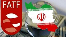 میرسلیم: نتیجه بررسیها درباره FATF بهمن ماه مشخص میشود