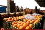میوهها در سال ۹۳ چند درصد گران شدند؟