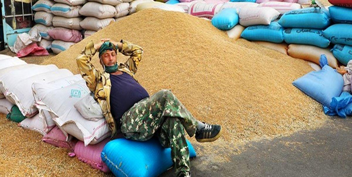 گندم، آب و گوشت به سوی بحران غذایی
