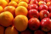 دولت مقصر ۸۰ درصد گرانی میوه است